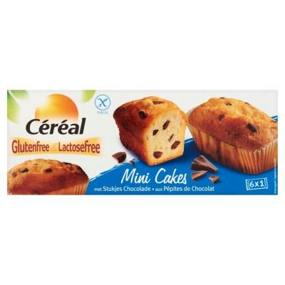 Céréal Mini Cakes Met Stukjes Chocolade