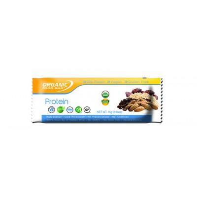 Organic Food Organic Food Bar Protein