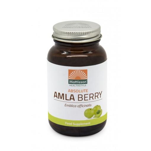 Mattisson Amla Berry Extract 500 mg